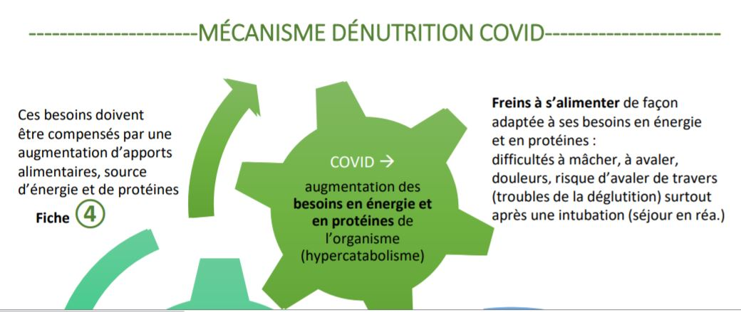 Permalien vers:ALERTE DENUTRITION POST COVID